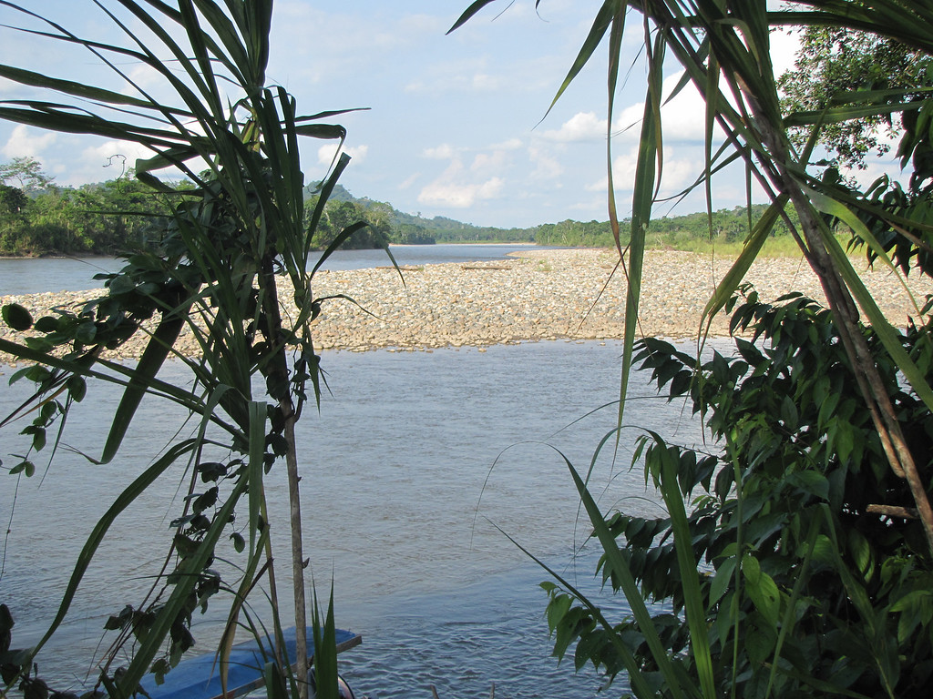 A peek at the Napo river in dry season.  River is tributory to Amazon. - William Bezdek