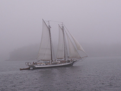 A foggy July afternoon in Maine. Not the best day to be out on the water, but better than the alternative.
